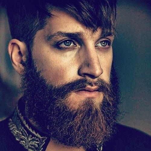 Long, Thick Full Beard