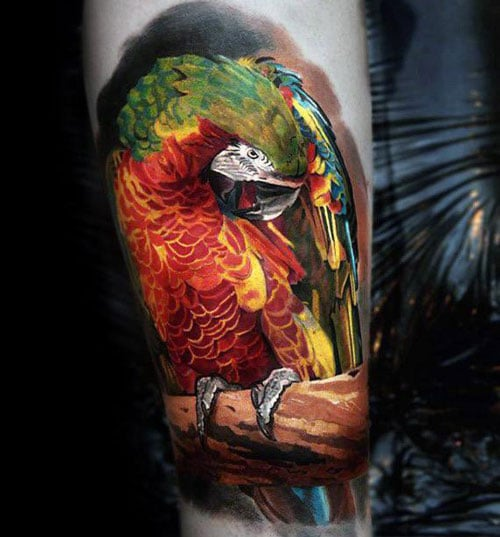 Realistic 3D Parrot Tattoo