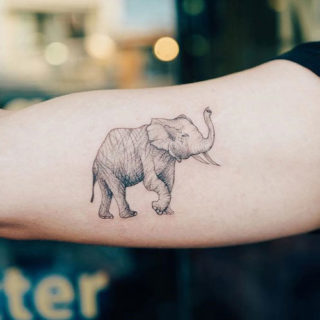 Best Elephant Tattoo Ideas