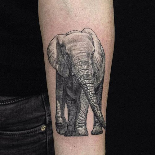 Beautiful Realistic African Elephant Tattoo