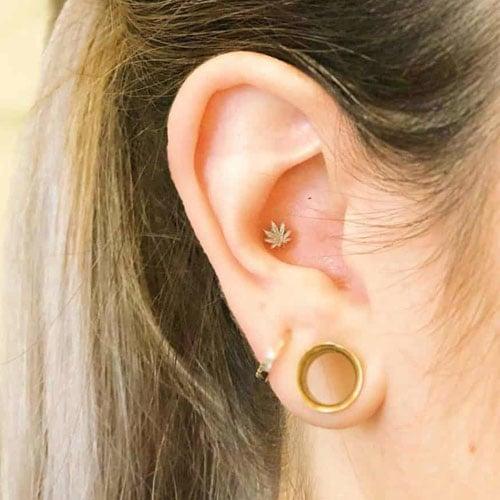 Conch Ear Piercing