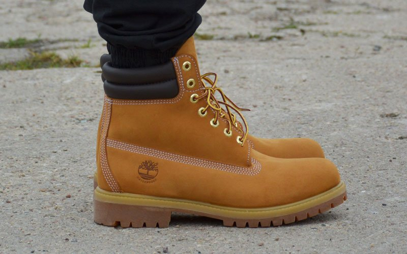 Six Inch and Above Timberlands