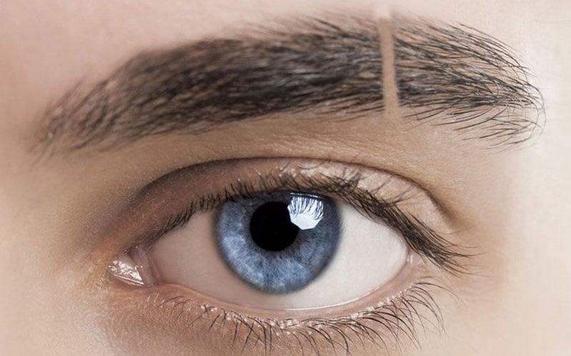 Eyebrow Slit Trend