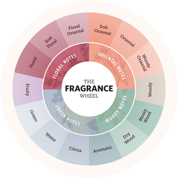 Types of Cologne Scents